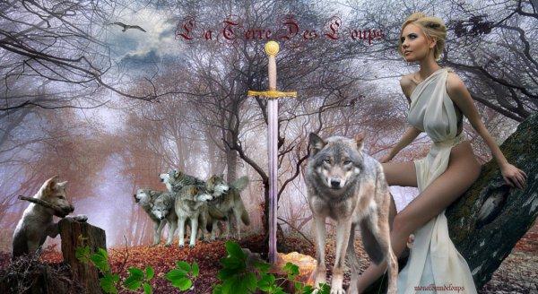 Blog de monalbumdeloups la terre des loups - Sieste du matin jusqu a quel age ...