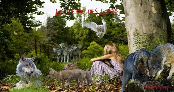 Tous les animaux sont nés avec l'innocence, la curiosité et l'amour.