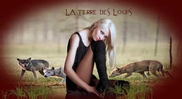 HAUTES ALPES Jean-Michel Bertrand va repartir à la quête du loup ...