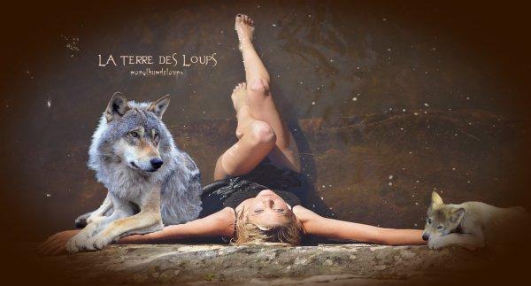 OBSERVATION ET STATISTIQUES   Le loup se doit d'être parmi nous, les éleveurs se doivent de vivre avec .... De quel droit contre nature veut-on l'empêcher !!!