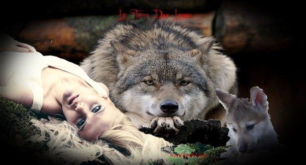 les loups communiquent avec plus de 20 dialectes différents