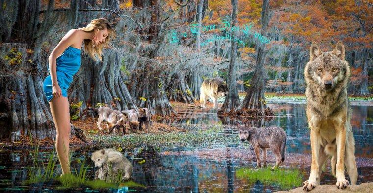 est-ce que d'autres animaux pratiquent un culte des morts ???