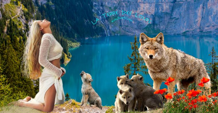 Le plan national d'actions dédié aux loups.....