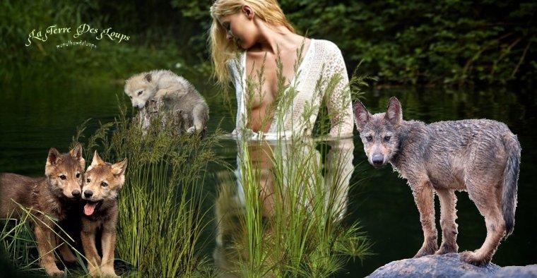 """""""Les animaux ont le droit d'être indifférents. Moi, je suis un animal avec quelque chose en plus, quelque chose qui change tout, qui m'ôte le droit à l'indifférence : je sais."""" !!!!"""