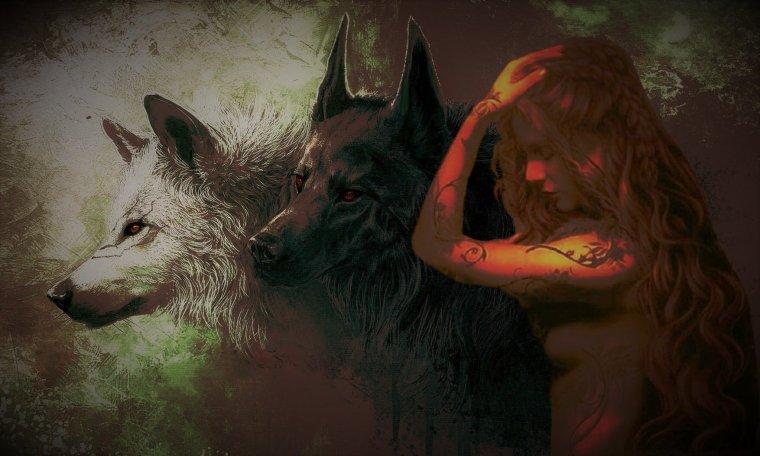 Différences entre chiens et loups...