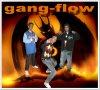 gangflow034