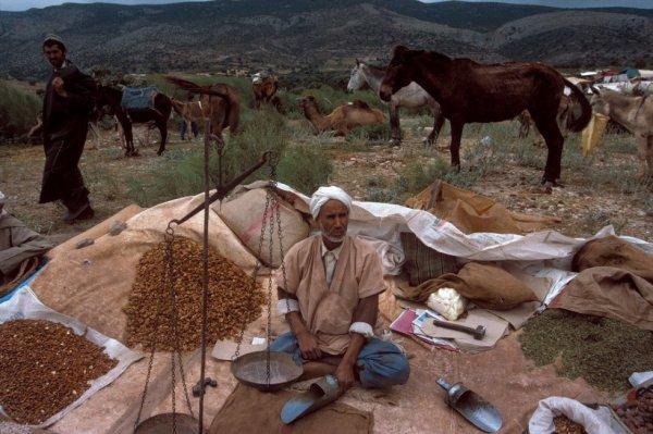 Vendeur de fruits secs - maroc