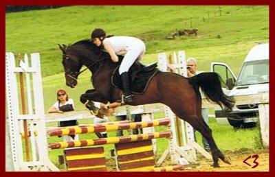 """"""" Le cheval n'a pas demandé à faire de l'équitation. Le premier devoir du cavalier, c'est donc d'essayer de lui faire apprécier ce boulot """""""
