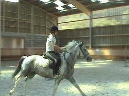 """""""On arrete jamais vraiment d'aimer les chevaux .."""" ಌ"""