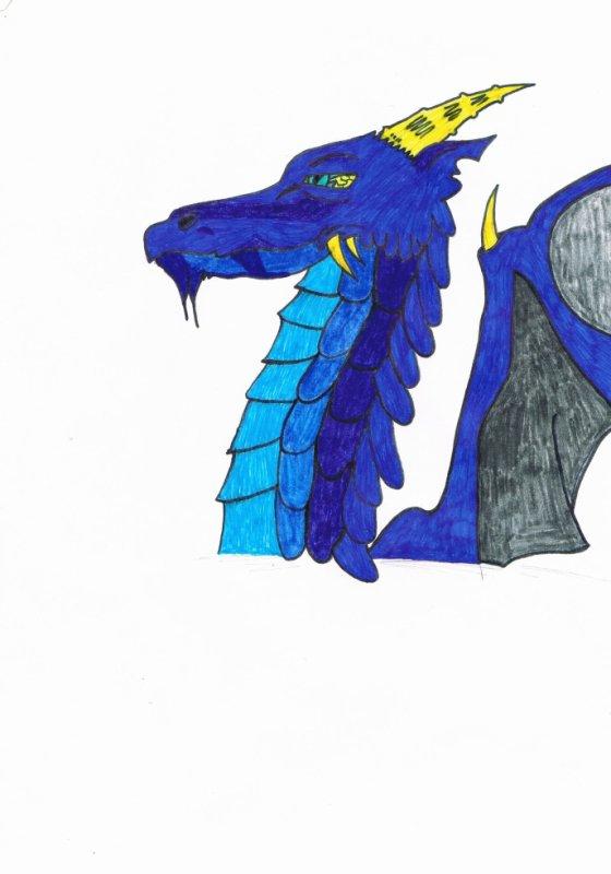 magnifique dragon de ryuko