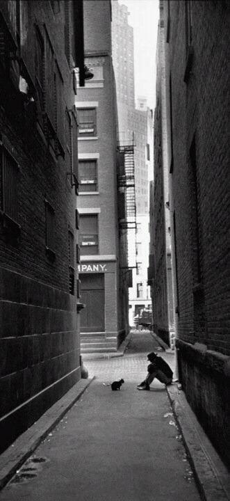PHOTOS HENRI CARTIER BRESSON. PHOTO ELLIOTT ERWITT