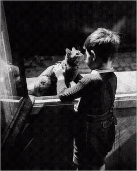PHOTOS . WILLY RONIS