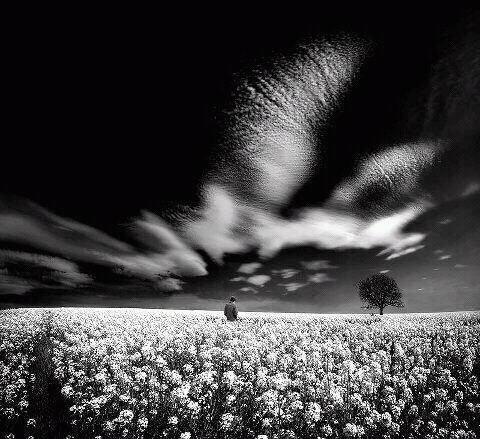PHOTOS. L. KRIELS