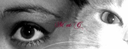 ♣ ~ Л α н й Ø и ~ ♣