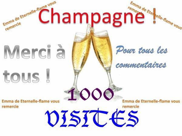 MERCI POUR LES 1000 VISITES !