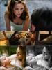 Bric à brac.    Voici 2 new still d'On The Road + deux beaux poster de Blanche Neige et le Chasseur. (+) OTR a son propre site maintenant (ici) mais également un FB (ici) pourquoi pas un myspace pendant qu'ils y sont...