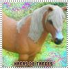Haras-de-Tarbes