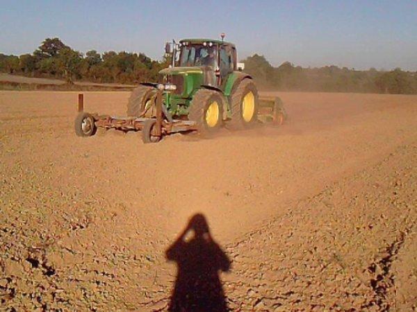 semis de colza et ray grass