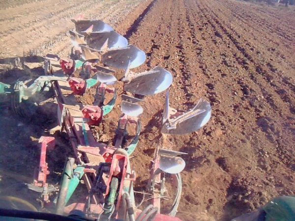 labour et semis de blé