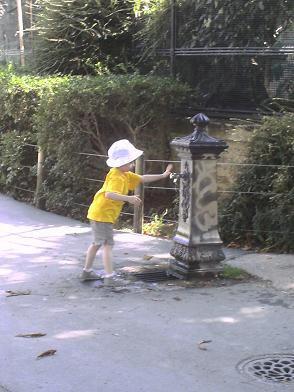 Ménagerie du Jardin des Plantes - futur yellow