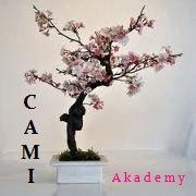 Cami Akadémy