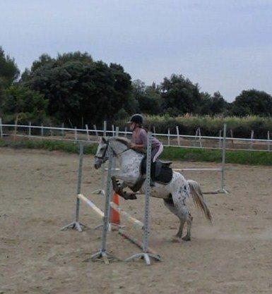 -         Le bonheur ce trouve sur le dos d'un cheval !