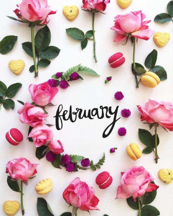 Février; Vous souhaitez quoi ce Mois ?