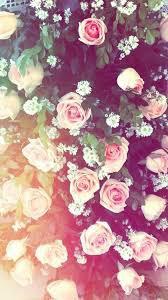 Des fleurs *-*