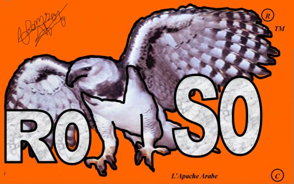 mon logo ROMSO