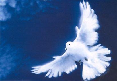 L'esprit saint de Dieu est la flamme qui éclaire l'âme et la réchauffe. Cet esprit aide à devenir GRAND de sa faiblesse et à l'accepter humblement.