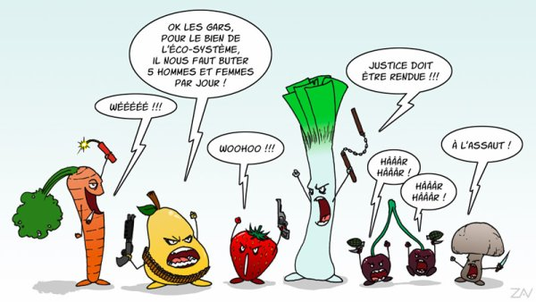 Les légumes s'installent chez vous !!
