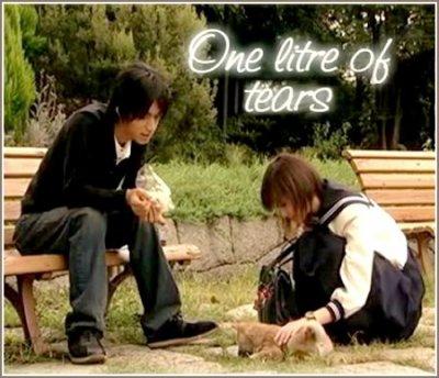 1 Litre Of Tears  11 Episodes  Genre :     Drama Japonais
