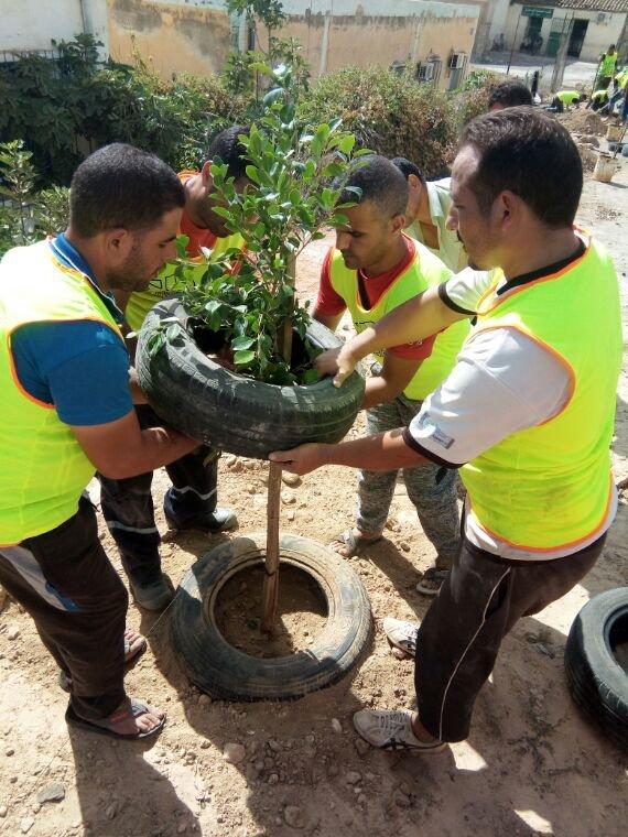 Association santé et environnement , planter
