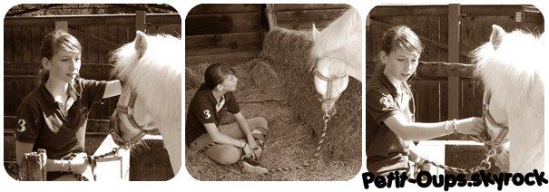 <<Les chevaux sont pour l'homme ce que les ailes sont pour l'oiseau>>