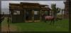 Avis aux propriétaires de chevaux