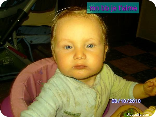 CREATOR: gd-jpeg v1.0 (using IJG JPEG v62), quality = 100