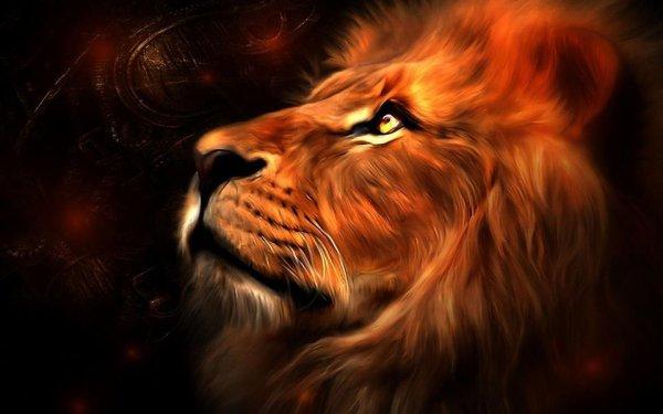 Lions 4 Life