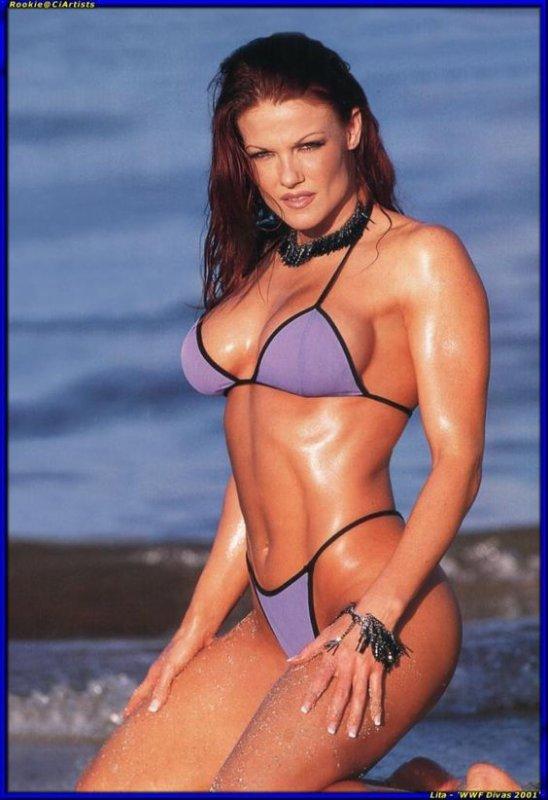 Dites moi en commentaire ou en message privé les divas de la WWE vous voulez voir sur mon blog