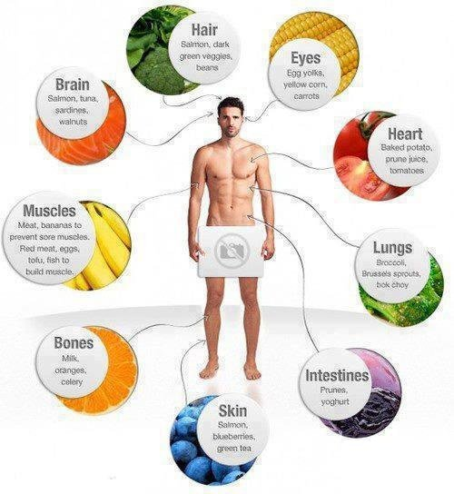 Santé : Une bonne Alimentation pour garder la forme !