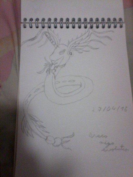 Méga évolution de drago inventé