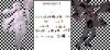 Pokéhumains de la Génération 5 - petit sommaire