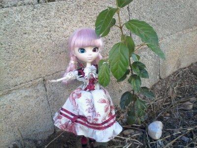 séance photo dans le jardin avec mémoria