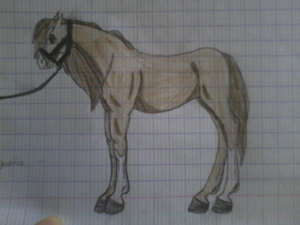 Chevaux Style Realisme Il Est Ou Mon Crayon Bordel