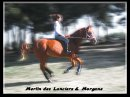 Photo de Merlin-Des-Lanciers