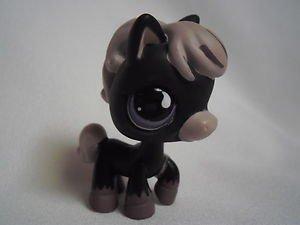 Petshop cheval blog de maeva543 - Cheval petshop ...