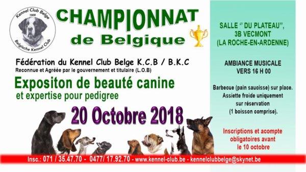 Exposition de beauté canine et bénédiction des animaux