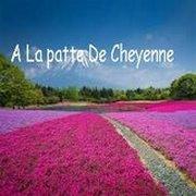 Blog de La-Patte-De-Cheyenne