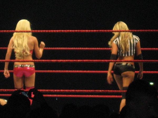 RAW WRESTLEMANIA REVENGE TOUR - STRASBOURG 14 AVRIL 2010