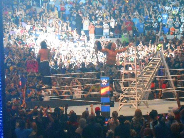 Wrestlemania 33