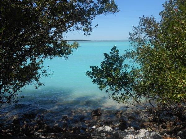 Voyage en Floride